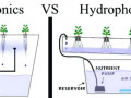 aeroponics-vs-hydroponics-visual-set-up-of-the-differences-in-the-systems-hydroponics-aquaponics-system-step-by-step